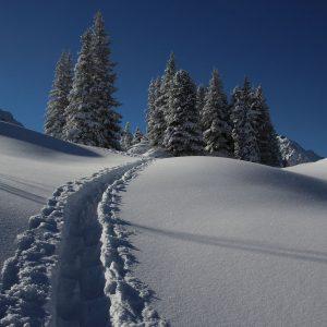 kurs skiturowy zakopane