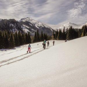 kursy i wycieczki na nartach