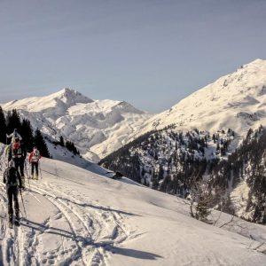 skitoury wycieczki i szkolenia